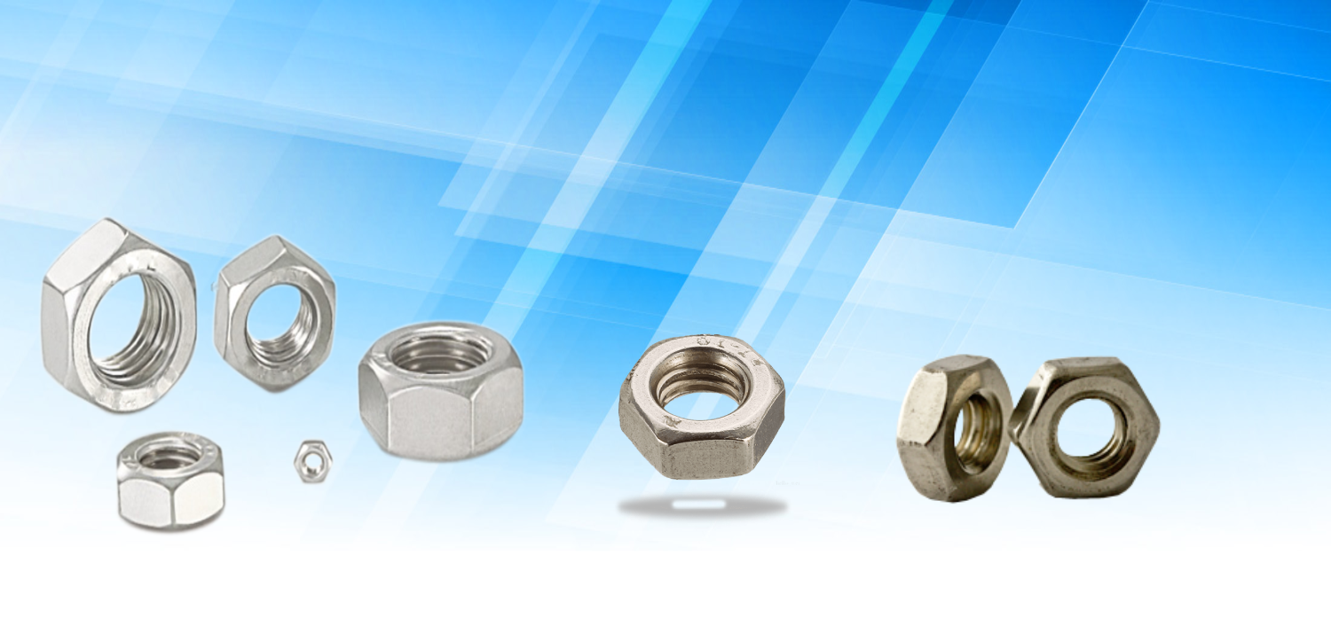 Nickel Hex Nut In Noida
