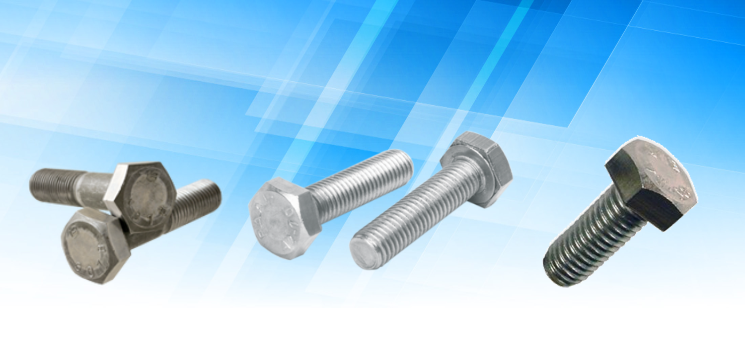 Stainless Steel Hex Bolt In Basti