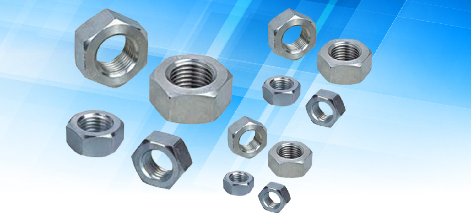 Stainless Steel Hex Nut In Panchkula